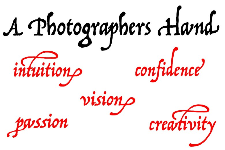 The 5 traits of great photographers