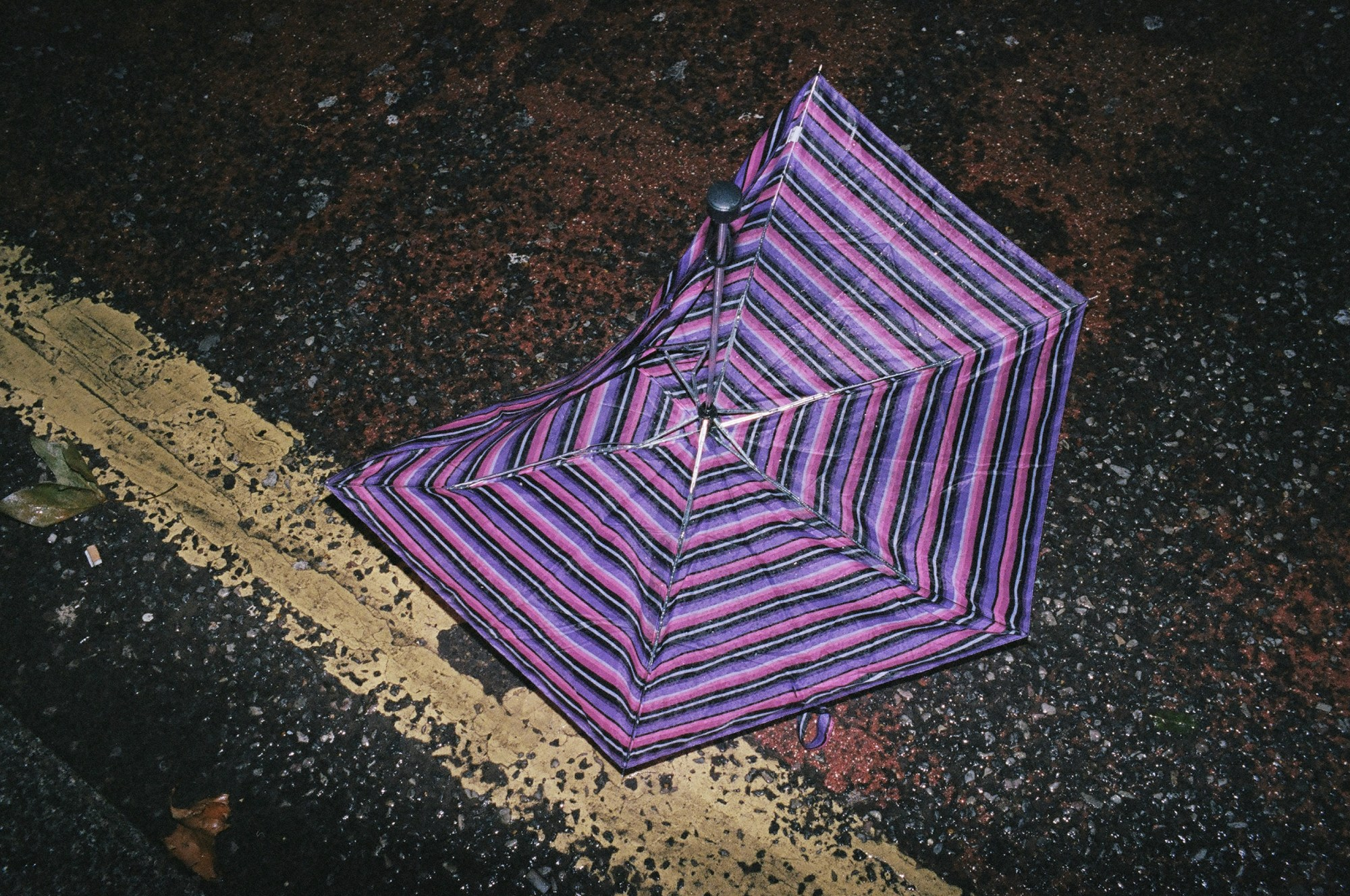 Purple umbrella on the ground with diagonal yellow line. Beautiful to me.