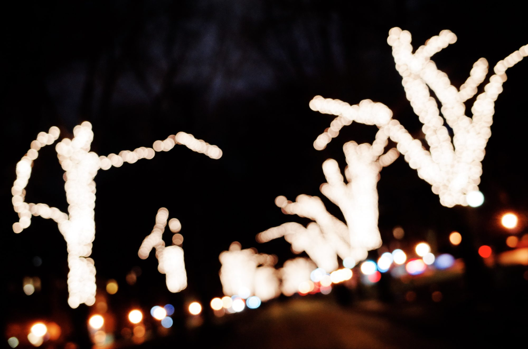 Out of focus trees at night. Boston, 2018