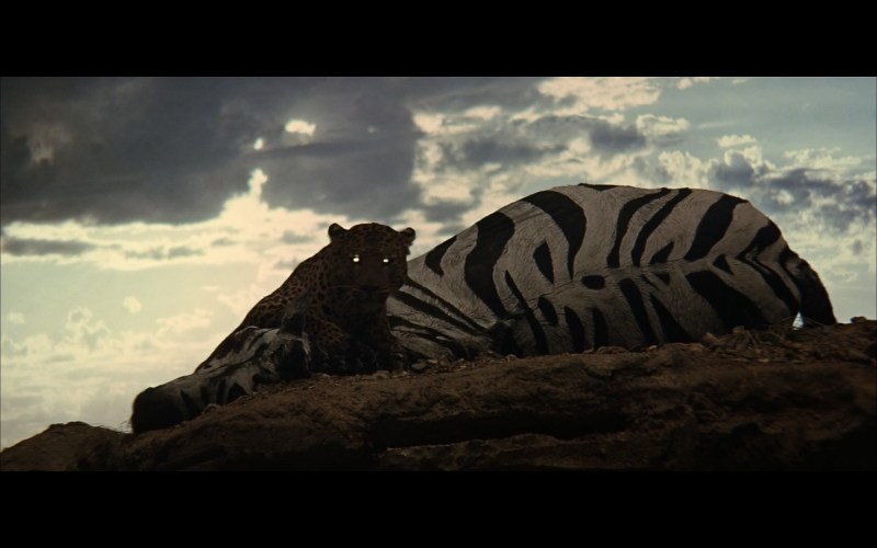 2001 Space Odyssey Cinematography-14