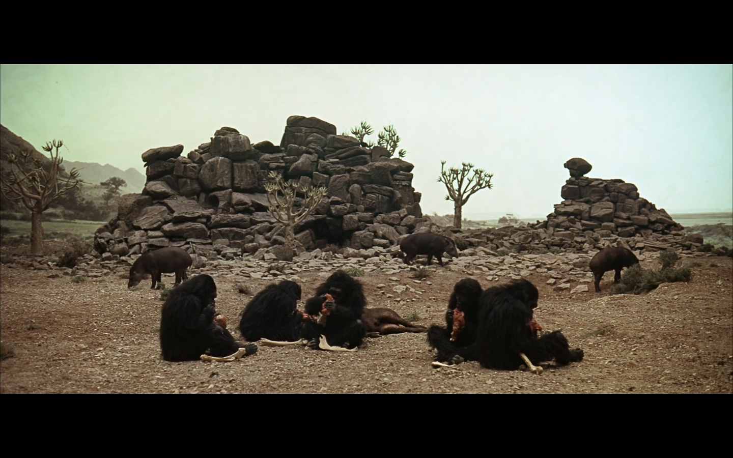 2001 Space Odyssey Cinematography-38