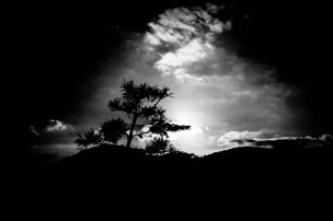 MEMENTO MORI - ERIC KIM PHOTOGRAPHY - DEATH AND LIFE11