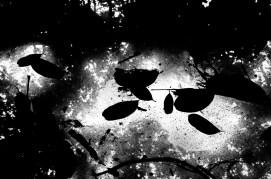 eric kim photography black and white hanoi-0009661
