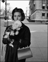 USA. New York City. 1958. Mrs. O. Kaletsch promenades her miniature poodle in the upper residential area of Fifth Avenue.