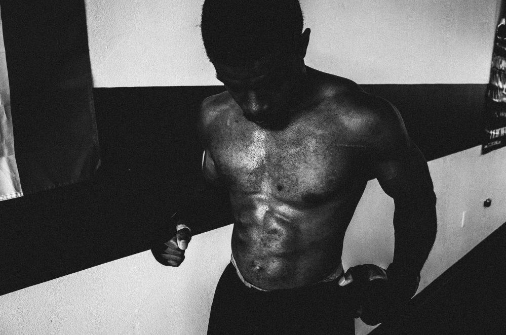 Gallo boxing muscle flex