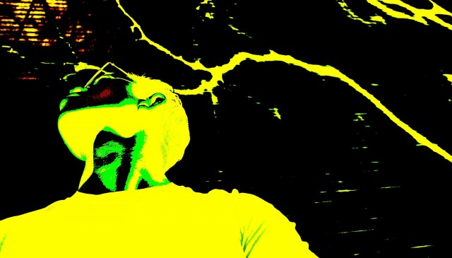 Selfie yellow