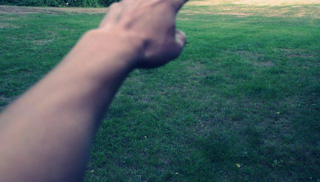 ERIC KIM hand pointing grass green