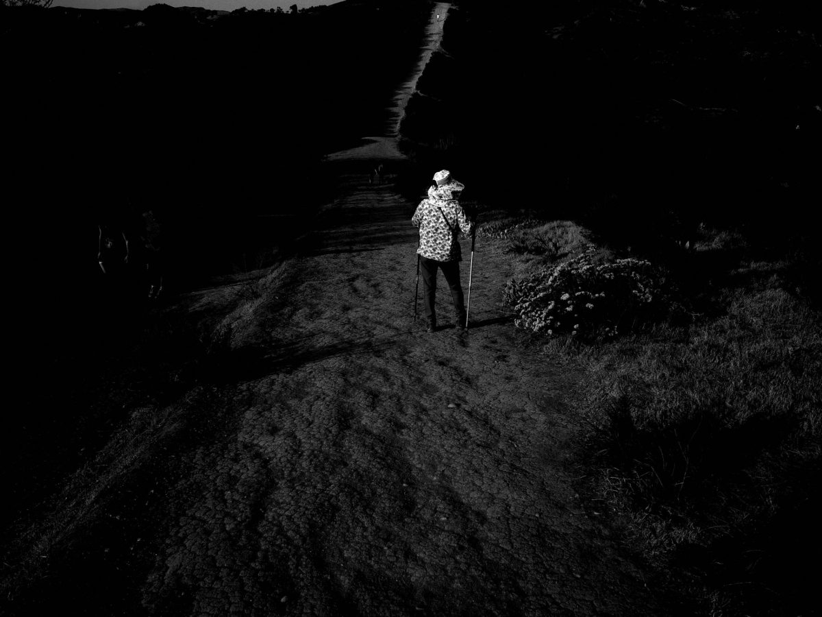 woman hiking desert hike nature