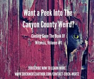 erick mertz, the book of witness, supernatural mystery