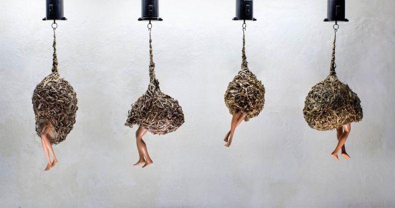 Les nids du jouir