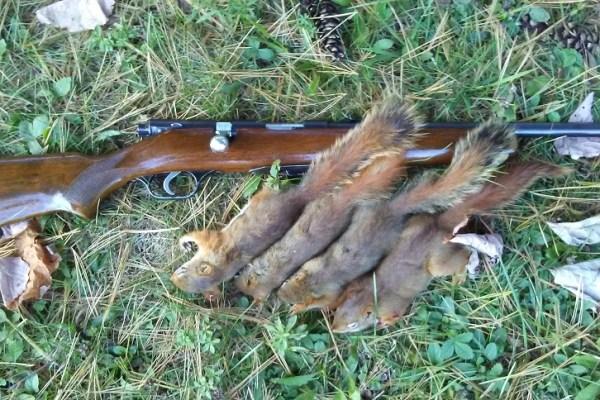 first gun