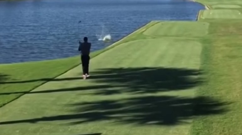 golf ball vs. duck