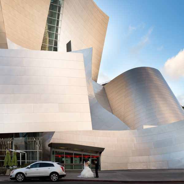 Downtown LA Disney Concert Hall Architectural Photography