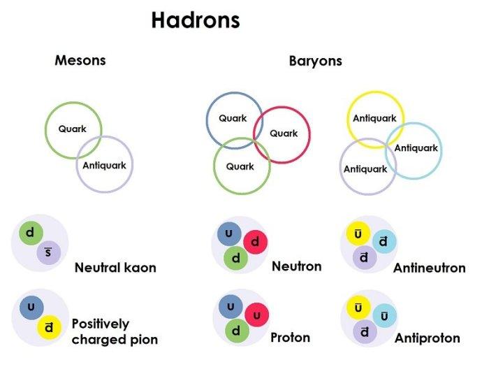 Hadrons