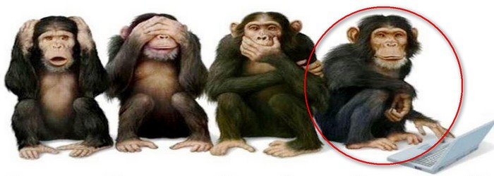 The 4th Monkey