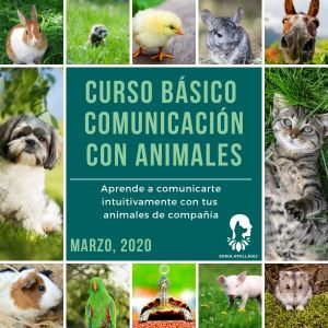 Curso Básico de Comunicación con Animales Marzo 2020