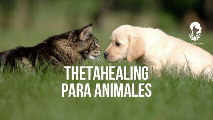 Thetahealing para animales