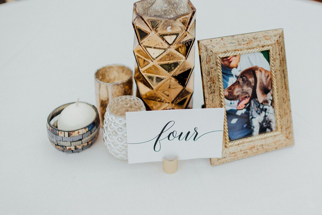 Incorporating your dog in your wedding