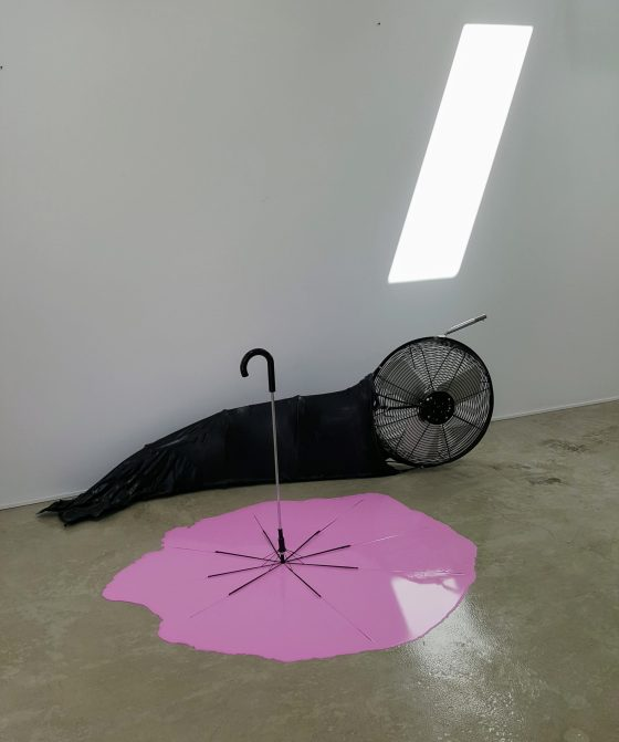 Erik Minter - Pour Ol' Pink Parasol with Infantile Propelled Slug - view 3 - 2017