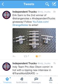 Independent truck Co. Erik sarni