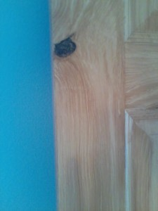 doorknot