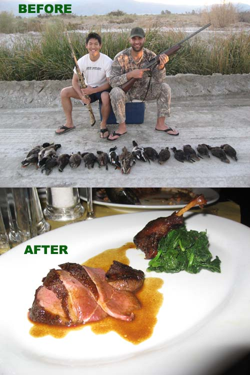 duckbefore_after