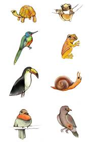 """Animals illustration by Erina Dempsey for children's book website """"The Little Snail"""""""
