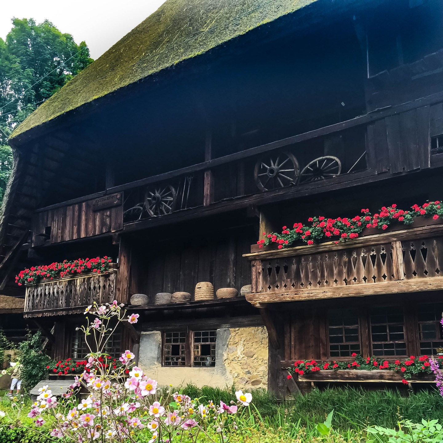 The outside of the oldest farmhouse at the Black Forest Open Air Museum. Note the beehives on the ledge!