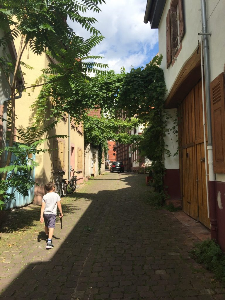 Things to do in Heidelberg with Kids