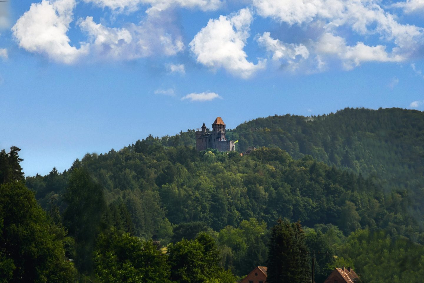 Burg Berwartstein in the forest