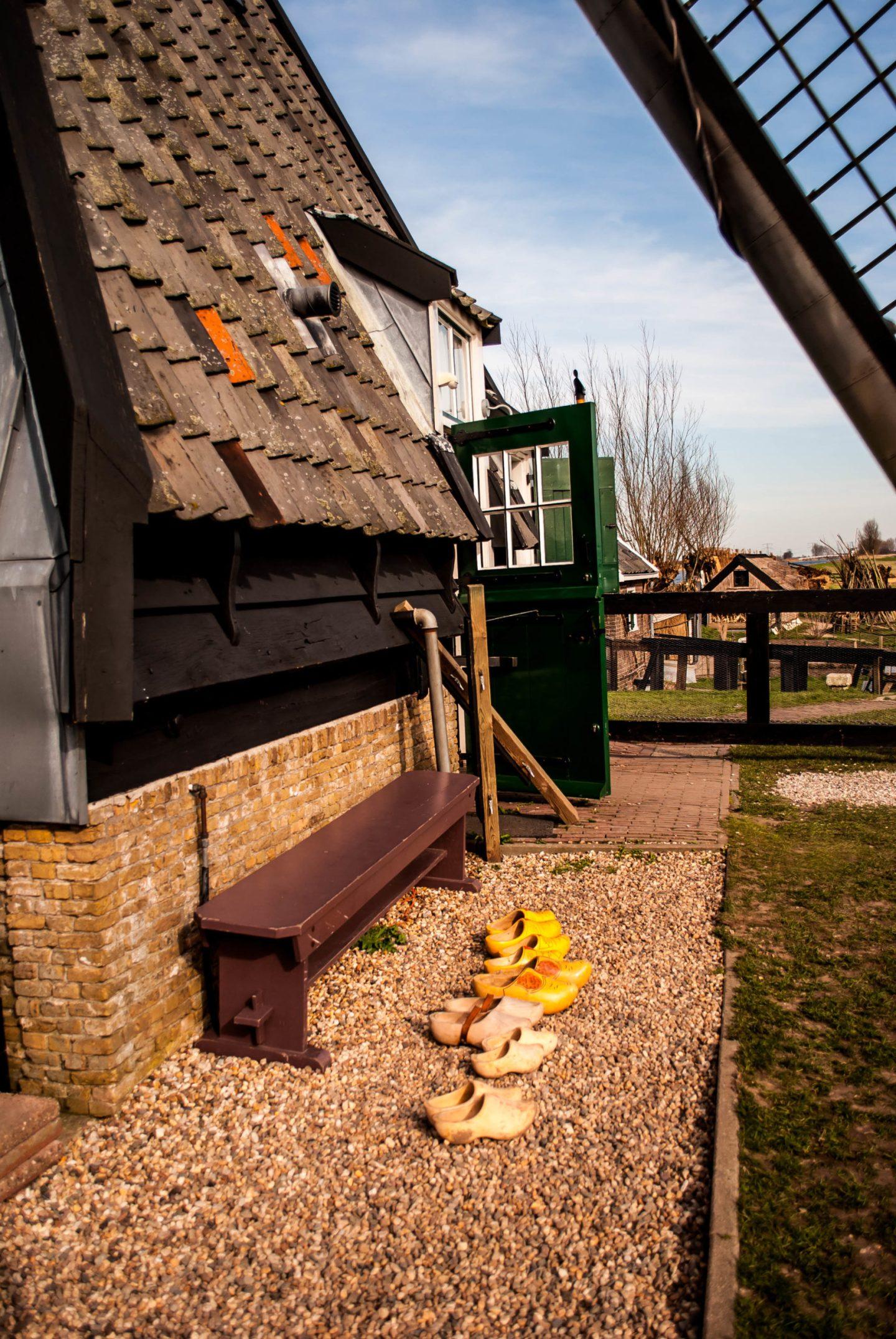 Kinderdijk scenery 8