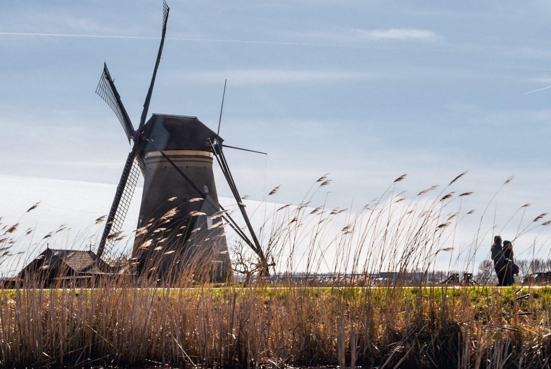kinderdijk windmills 3