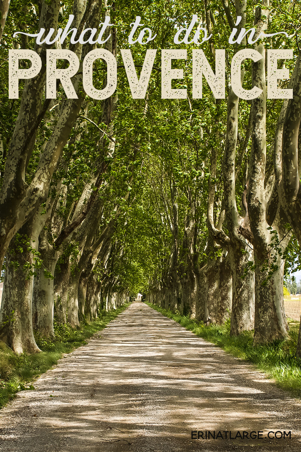 What to do in Provence PIN