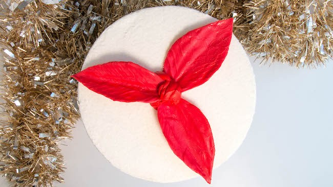 Adding the Chocolate Poinsettia Leaves to the Cake | Erin Bakes
