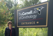 Visiting the Cornell Lab of Ornithology this summer.
