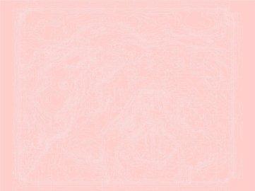 Erin Gee - Larynx Series