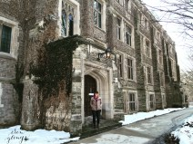 McMaster University - a gorgeous campus in February.