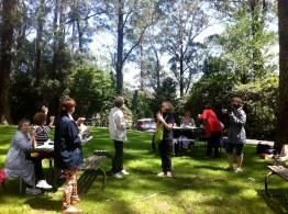 Green grass picnic