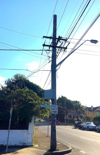Tuesday. Telephone wires