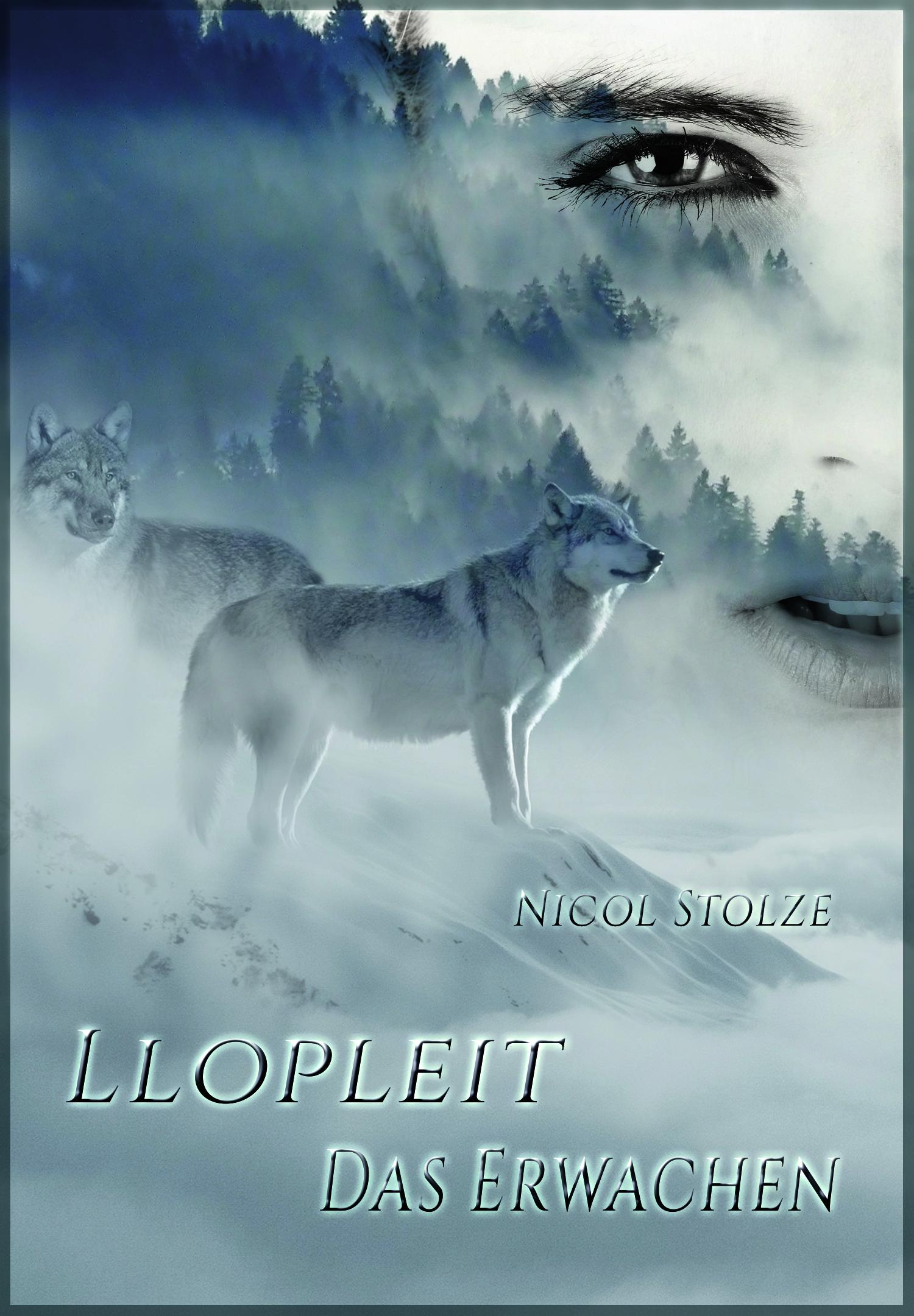 Llopleit Cover 1d