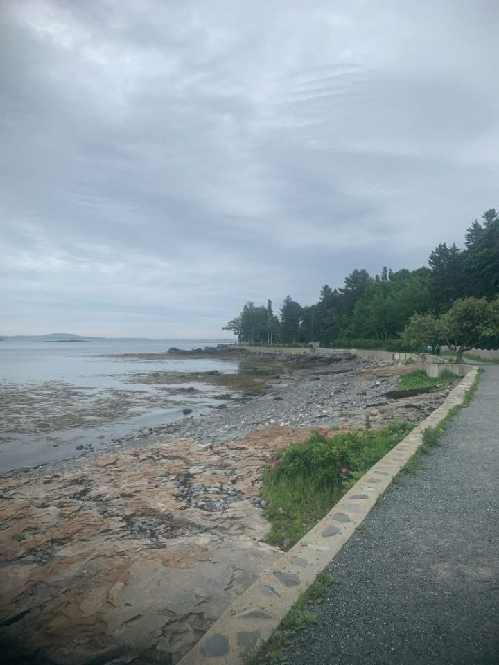 bar harbor shore path, view of the beach from the path