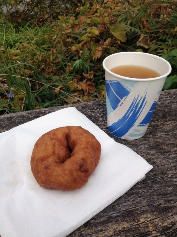 Apple cider + doughnut