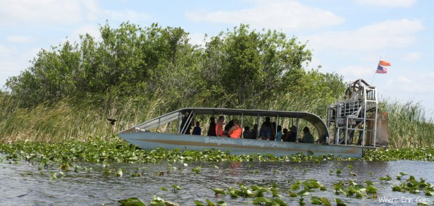 Everglades Holiday Park | Where Erin Goes