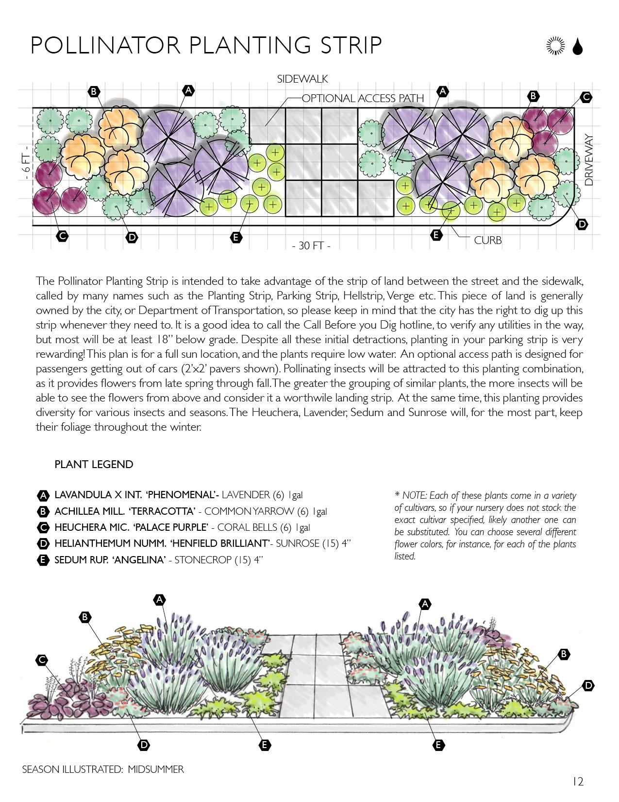 All Flower Drawing With Labeled Parts Plantcelldiagrampng