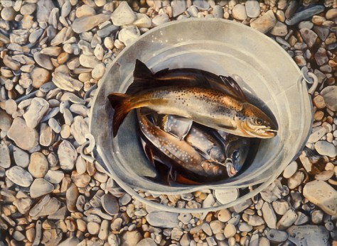 Mary Pratt. Trout in a Bucket, 1974. Oil on board (61.0 x 76.2 cm)