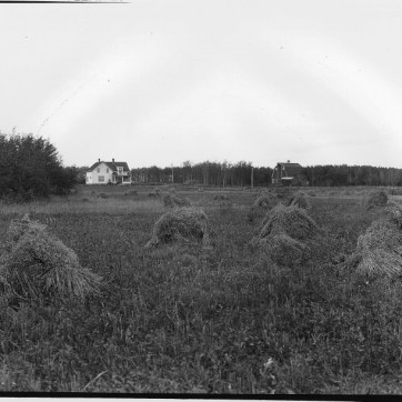 Wm. Notman & Son, J. Tait's Farm, North Battleford, SK, 1920. Silver salts on film - Gelatin silver process, (20 x 25 cm). McCord Museum VIEW-8544.