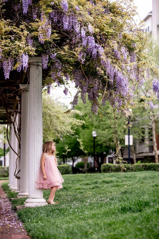 Spring Family Photos in Alexandria, VA with wisteria