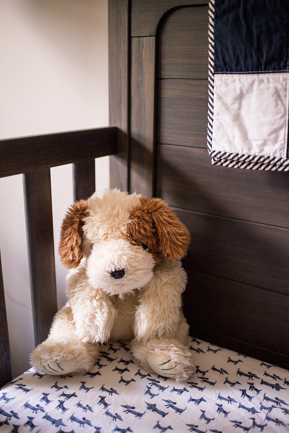 Dog Themed Nursery for Baby Boy Newborn Photography
