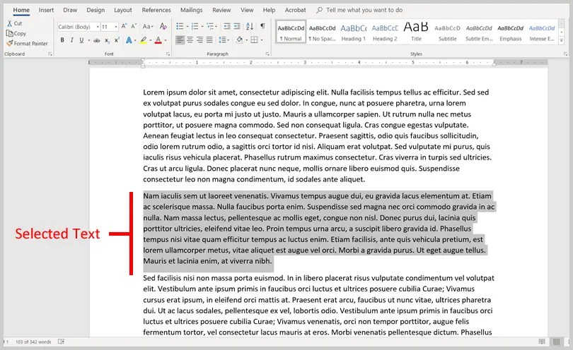 Image of Selected Text in Word 365 / Word 2019 | Step 1 in How to View the Word Count in Microsoft Word