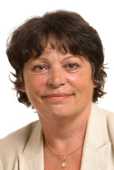 Michele RIVASI - 8th Parliamentary term